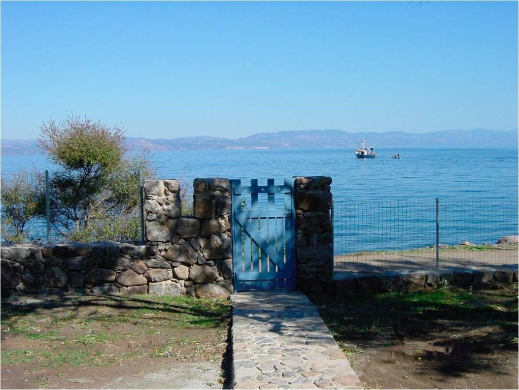 Entrance (Medium)
